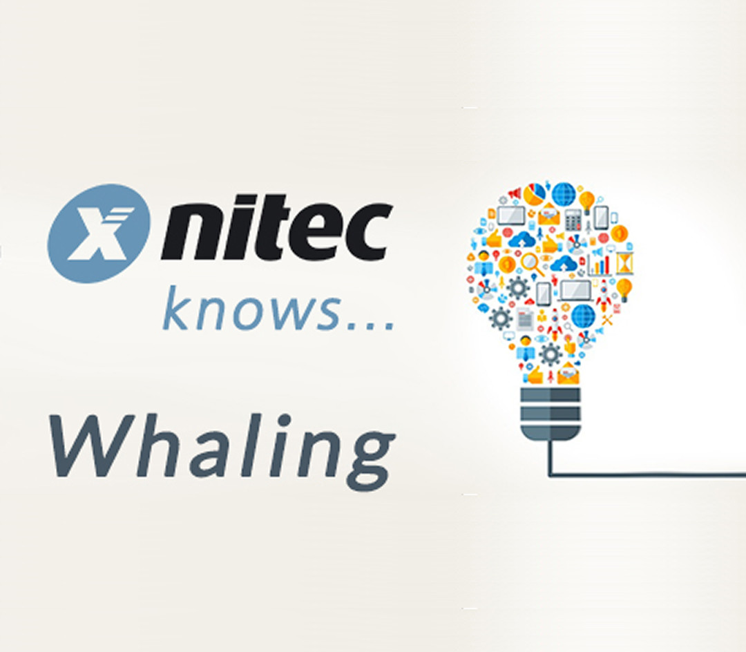 Nitec knows… Whaling - Featured Image